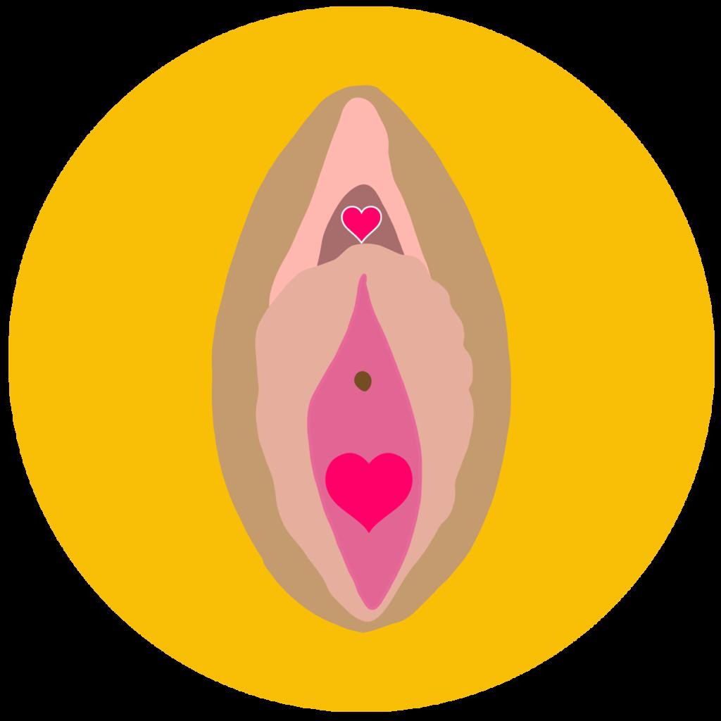 A vulva on a yellow circle background
